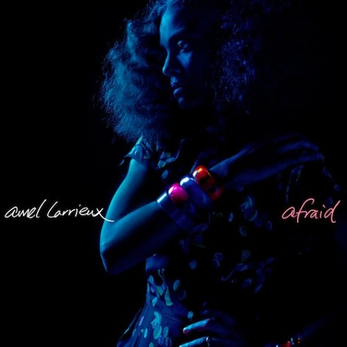 "Amel Larrieux: ""Afraid"""