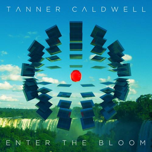 Enter the Bloom (Original Mix)