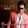 Falak Shabir - Tu Mera Dil Meri Jaan Mp3