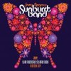 Taste The Grove (HT remix)/ The Sunburst Band