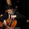 Schubert Arpeggione Sonata 1. mvt