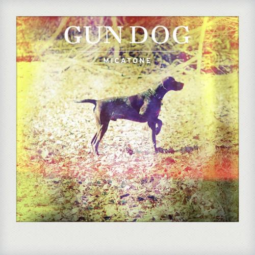 """Micatone """"Gundog"""" ( Alex Barck Mix )"""