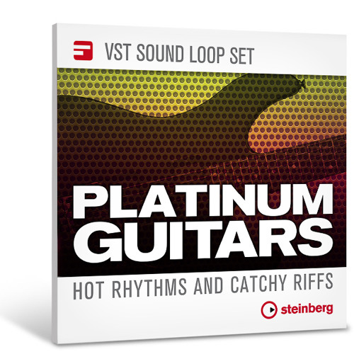 02 Demo Track - Platinum Guitars