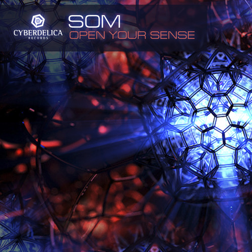 04 - SOM - Shiva (Rework 2013)