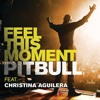 Pitbull - feel this moment (dj wildwolf remix)