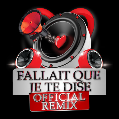 Fallait Que Je Te Dise Remix