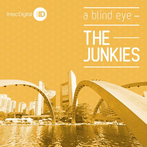 The Junkies - Everyday Everynight - ID040 web