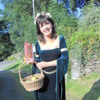 An Interview With Liz Davies of Golygfa Gwydyr, North Wales