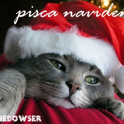Pisca navideña 2012