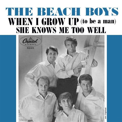 When I Grow Up (To Be A Man) (Beach Boys Cover) (2013)
