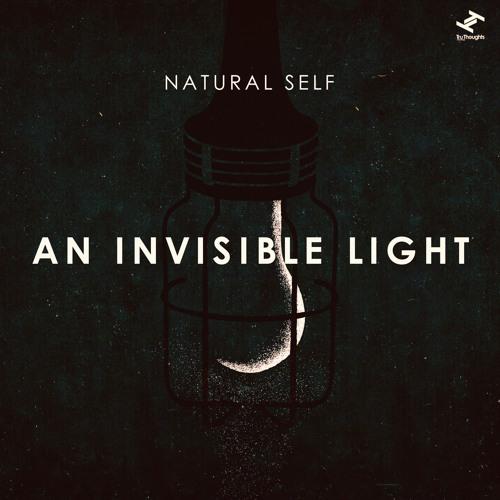 Natural Self - An Invisible Light (Robinn Remix)