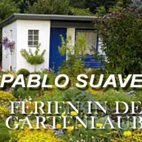 Pablo Suave - Ferien in der Gartenlaube PART 1 (www.pablo-suave.de)