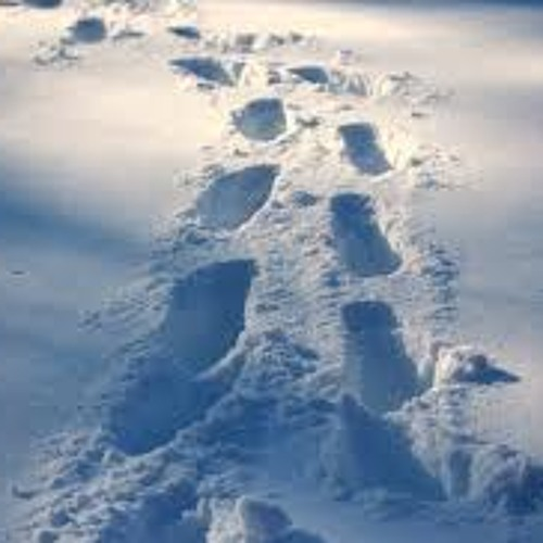 See My Footsteps