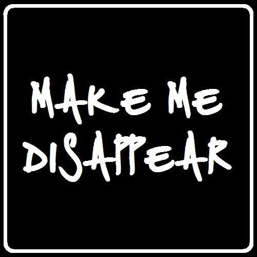 Make Me Disappear [2013]