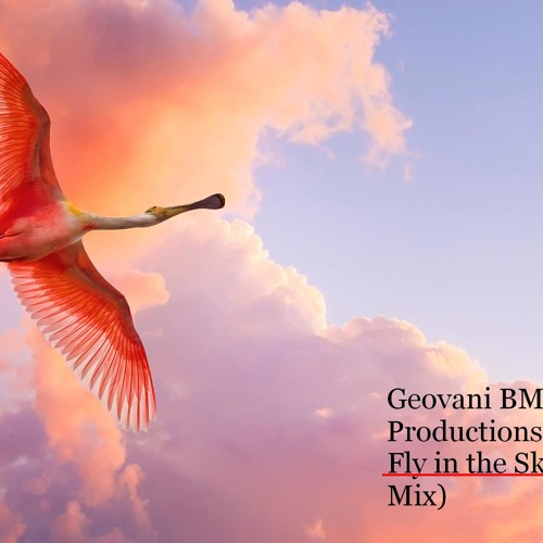Fly in the Sky Geovani BM Productions (Original Mix)