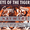 Survivor Eye Of The Tiger Haywyre Remix Aspw 2 Free Dl Mp3
