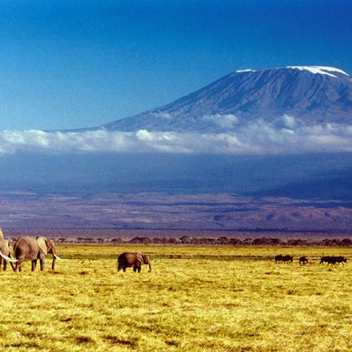 Eric Rigo. Kilimanjaro