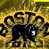 Bruins playoffs