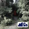 Ebi - Wolke Podcast Juni 2013