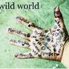 Mr. Big - Wild world (cover by Latarii)