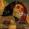 Bob Marley - Babylon Feel Dis One (Rare and Unreleased Version)