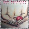 The Bristles - Spirit Way (single version 2013)