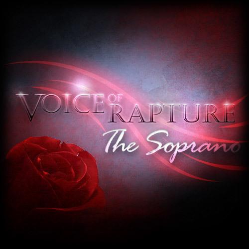 Xiaotian Shi - A Falling Dream - Voice Of Rapture