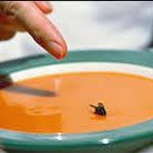 THERE IS A FLY IN MY SOUP/ JUST 4 FUN