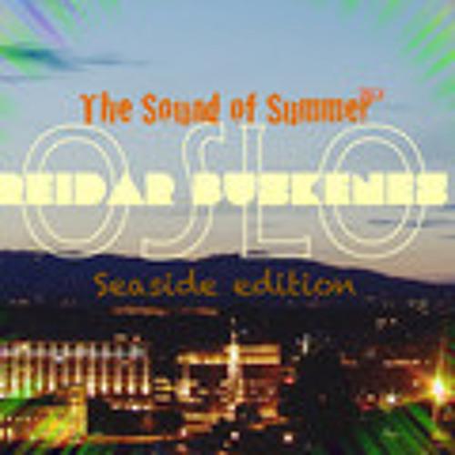 Reidar Buskenes - The Sound of Summer 2013 - Oslo - Seaside Edition