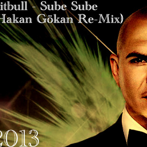Pitbull - Sube Sube (Hakan Gökan Re-Mix)