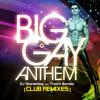 Big Gay Anthem (Griffin Whites 80s Neon Party Remix)- DJ STONEDOG feat. THARA BANDA [Teaser]