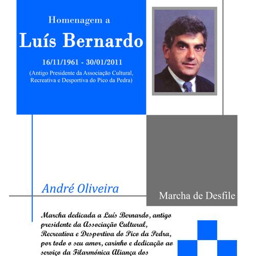 Homenagem a Luís Bernardo - André Oliveira