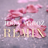Arnaldo Antunes, Carlinhos Brown, Marisa Monte - Joga Arroz (DeepLick Remix) mp3