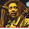 Ganja, Bob Marley
