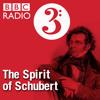 Schubert's Vienna: 10 Wallersee and Salzburg
