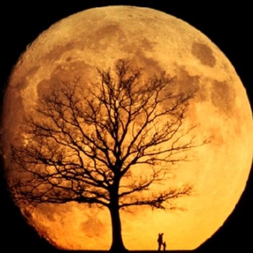 Moon Light Lullaby