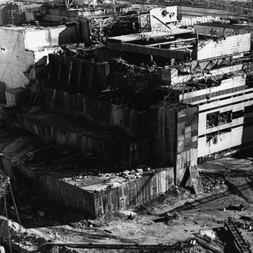 Grauhandversteinerung - Reaktor agiert (2005)