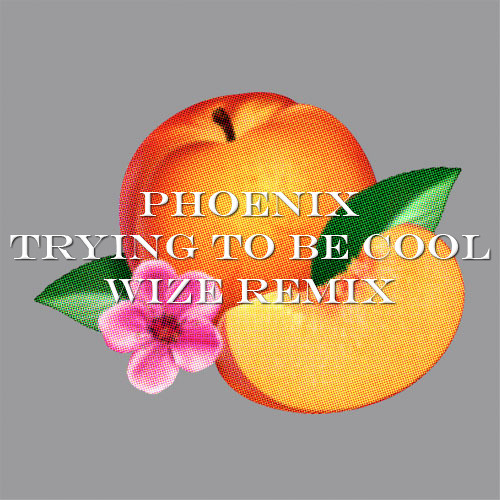 Phoenix - Trying To Be Cool (Wize Remix)