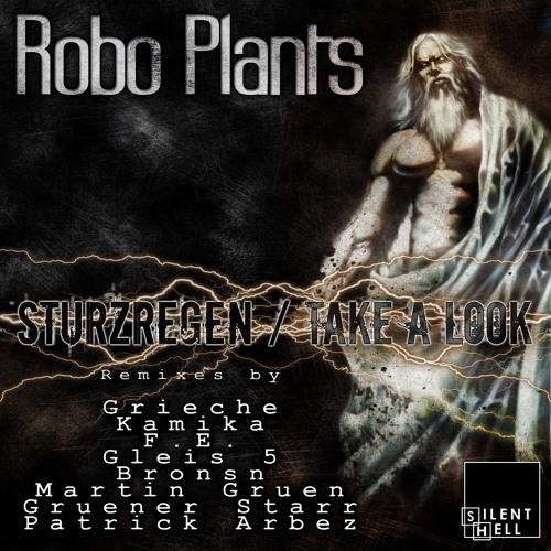 Ropo Plant - Sturzregen (Gleis 5 Remix) SHR008