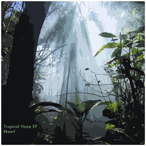 Skaarl - Haze