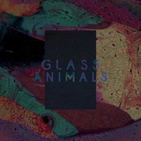 Glass Animals Exxus Artwork