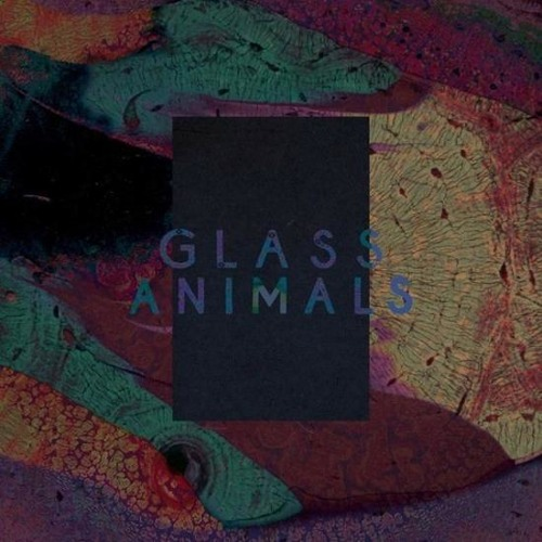 Glass Animals - Exxus