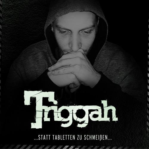 14. Triggah - Im Auge des Betrachters prod v Robert Erwes