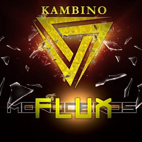 KamBINO - Flux