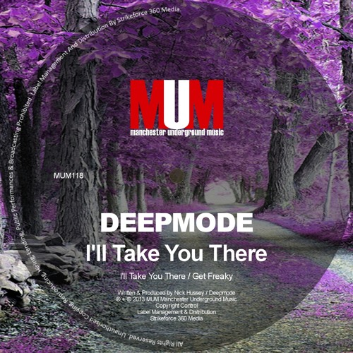 Deepmode - I'll Take You There/Get Freaky