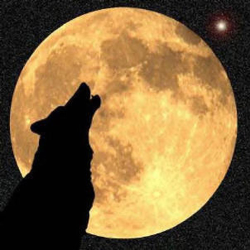 National Poetry Collaborations: 'Lone the Wolf Remains' Rivy:) & musicoality
