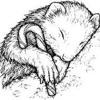 Ratcatcher - Marsupial Dreams - Dream House Vol 1.3 - BLND1765