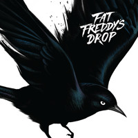 Fat Freddy's Drop Blackbird Artwork