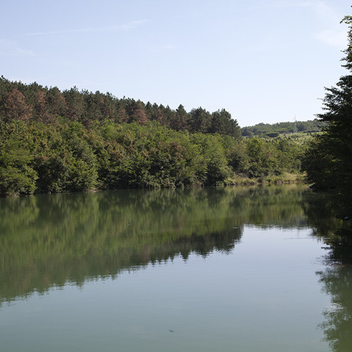 Nature sound - On the Lake -Jutro na jezeru -19th June
