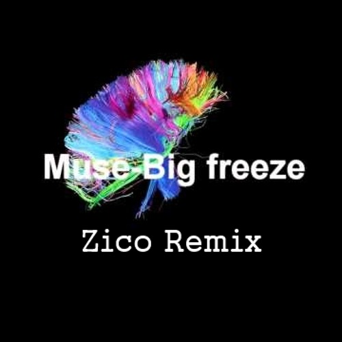 Muse - Big Freeze (Zico Remix)